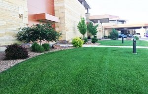 Business Landscaping Services in Sioux Falls