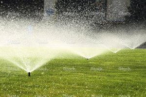 Sprinkler System and Blowout